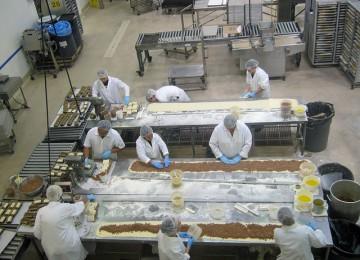 רישיון יצרן מזון – עושים אצל מומחים
