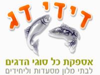 רישוי פלוס | יועץ נגישות | בטיחות באש- דידי דג